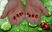Ladybirds in Gelish - Click here to enlarge this image